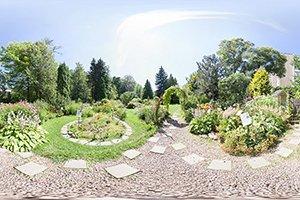 Виртуальный тур по ботаническому саду ТГУ