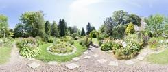ботанический сад ТГУ - виртуальный тур